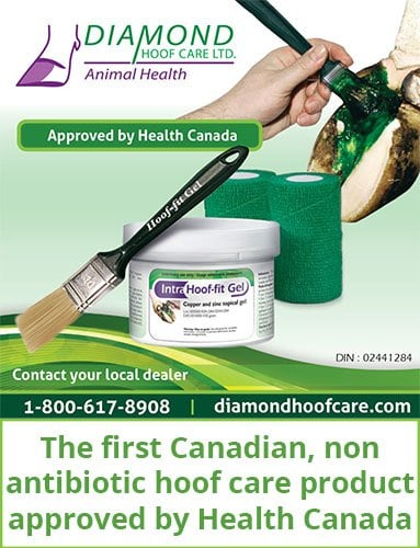 Hoof-fit Gel