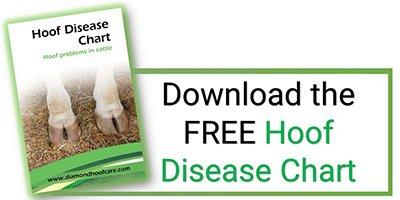 Hoof disease chart