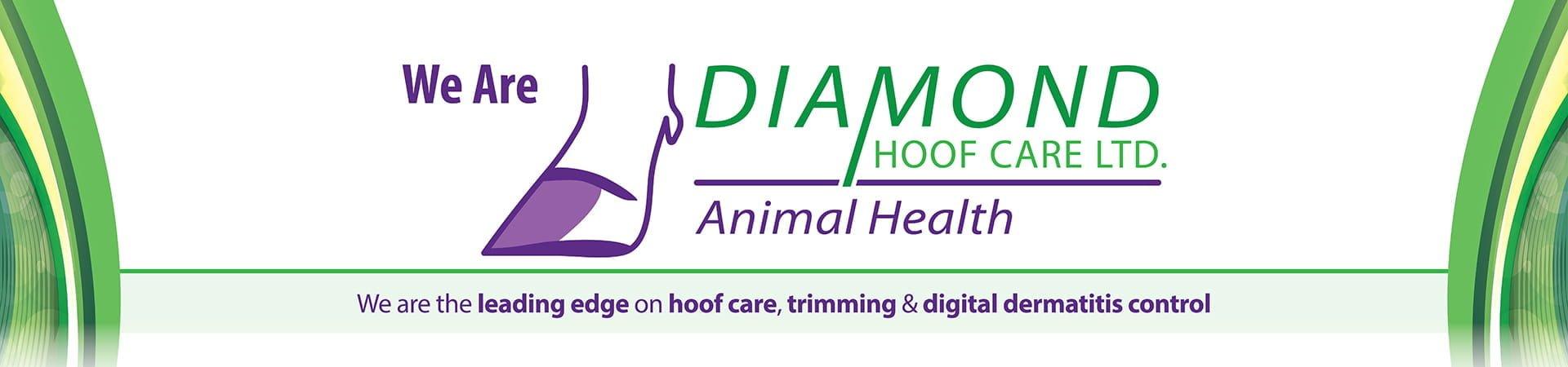 About Diamond Hoof Care
