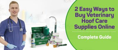 2 Easy Ways to Buy Veterinary Hoof Care Supplies Online